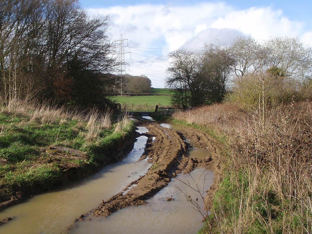 A muddy gateway in Melksham Without