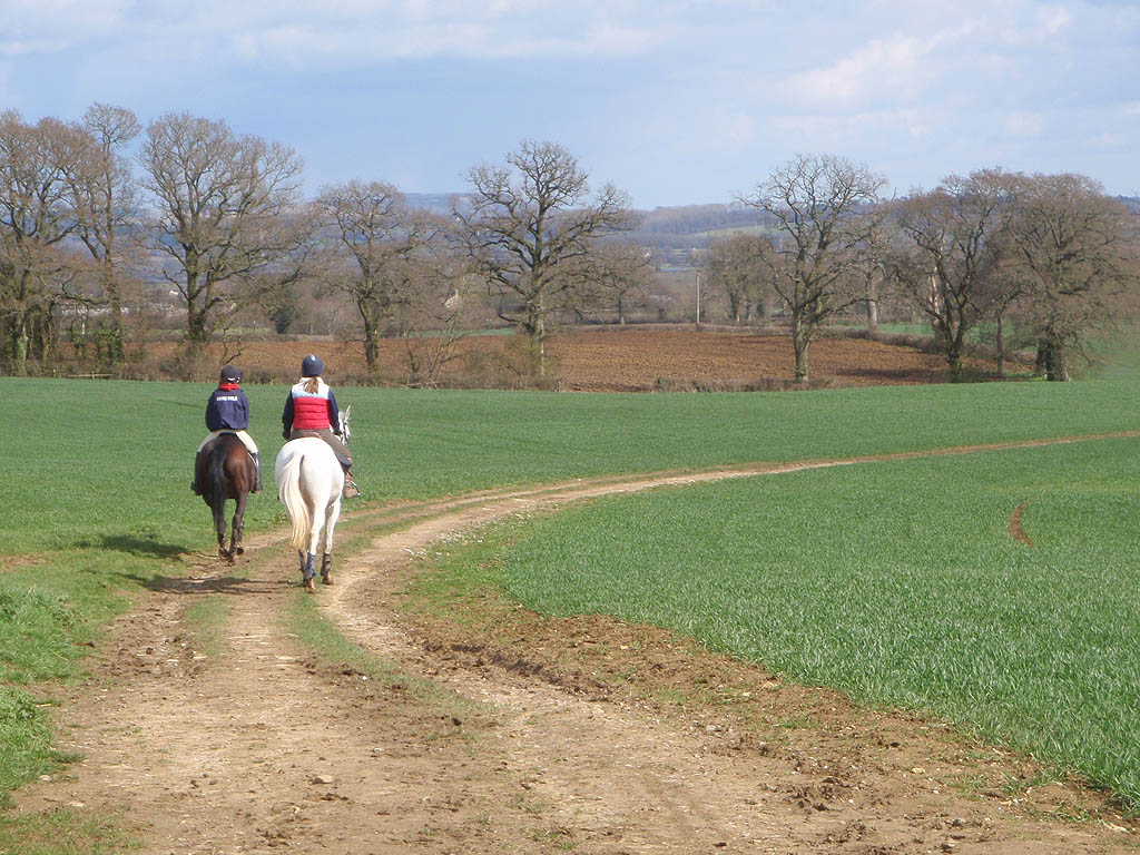 Riding near Whitley / Roman Road
