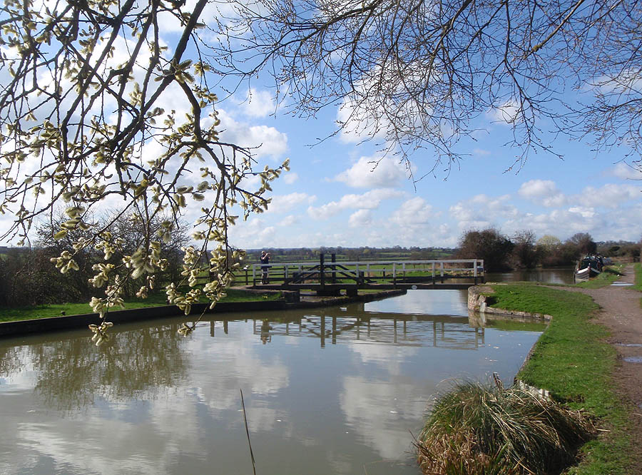 Swing Bridge in the Spring