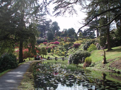 The gardens at Alton Towers