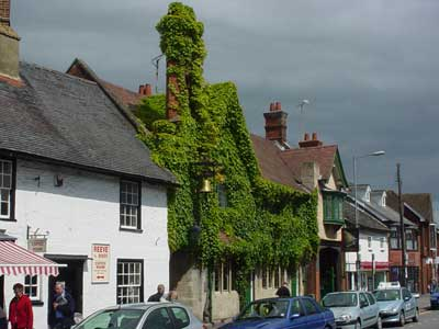 An Ivy clad pub/hotel in Amesbury