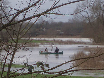 The River Avon in flood near Melksham