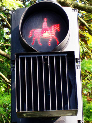 Traffic lights for horses