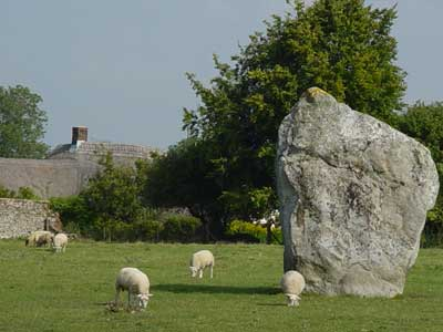 Sheep at Avebury, Wiltshire