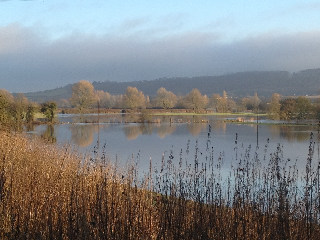 River Avon flooded near Beanacre