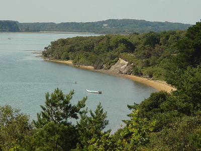 A cove on Brownsea Island