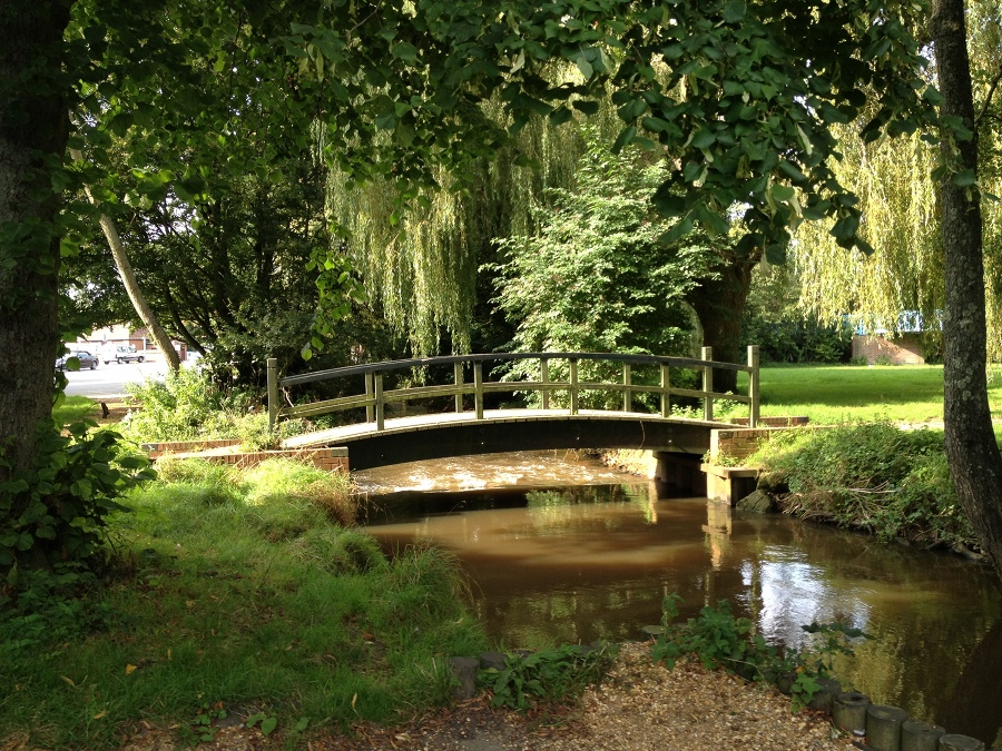 Bridge in the park, Blandford Forum