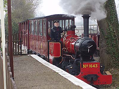 Steam Train in Norfolk