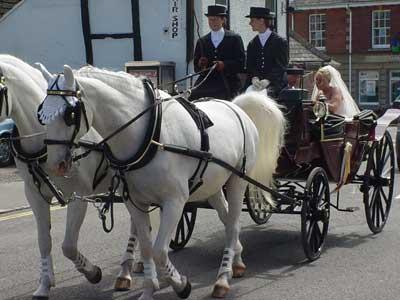 A fine marriage ride