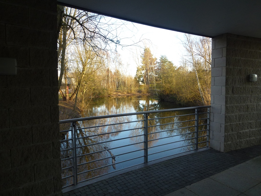 Lake at the Trinity Centre, Cambridge Science Park