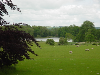 Corsham Court - The Lake