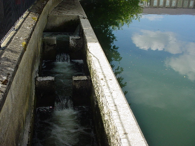The fish pass, Chippenham