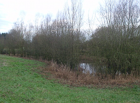 old flood pools outside the reserve