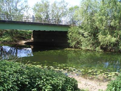The River Avon in Conigre Mead