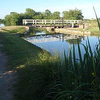 Canal near Bowerhill