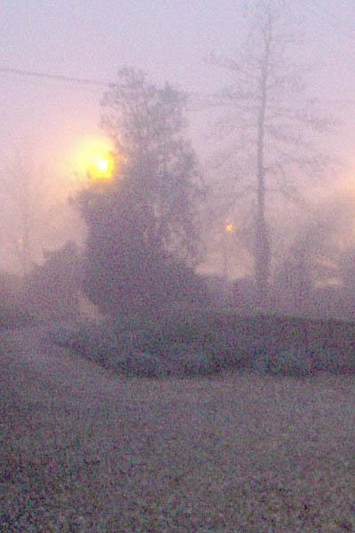 Mist in Melksham