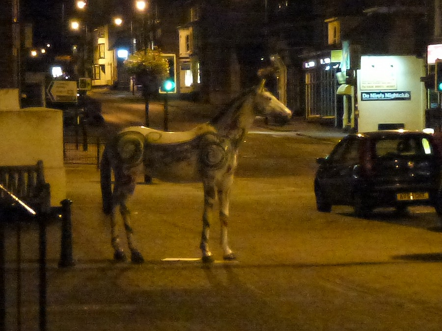 Horse in Newmarket