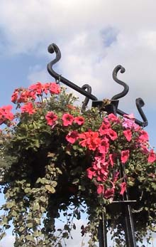Hanging baskets, Melksham Town Bridge