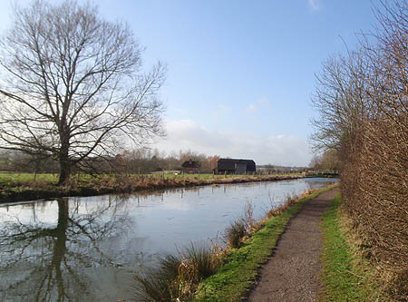 Canal near Freddies Wood