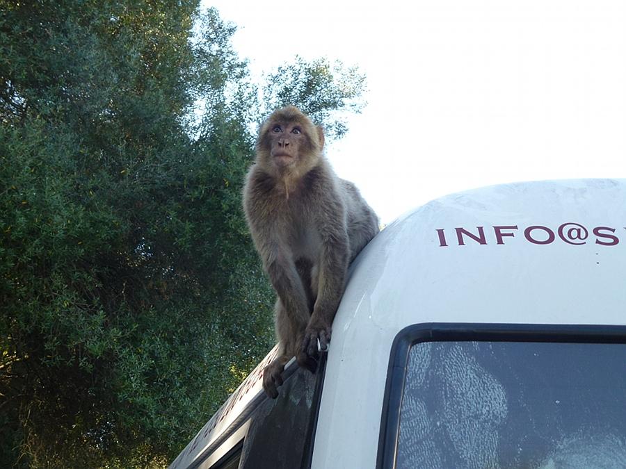 Touring Gibraltar