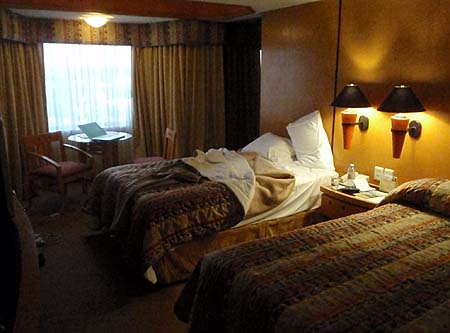 Hotel Room - Lopes Mateaos