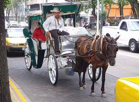 "A ""calandria"", a traditional taxi only found on Guadalajara"