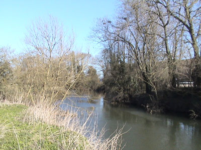 The river Avon passes nearby - Staverton