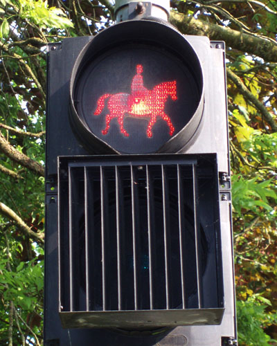 Traffic control lights for horses