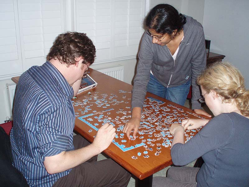 Doing a jigsaw at Well House Manor
