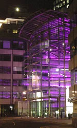 Purple lights