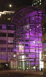 Purple lights