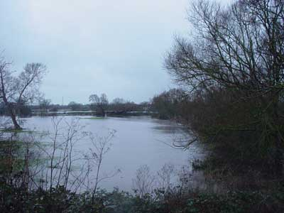 Another flooded field