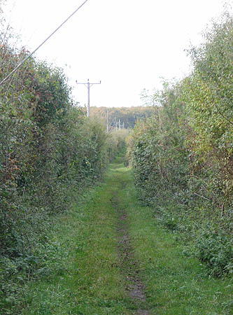 From the A345 towards Larkhill, the old trackbed is a bridleway