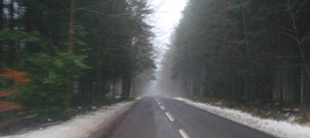 Longleat road in the snow