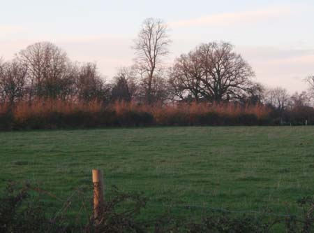 Fields around Melksham