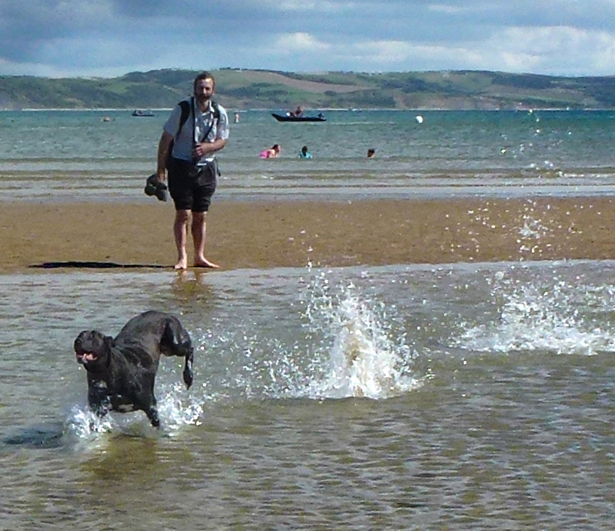 Gypsy enjoys the sea at Weymouth