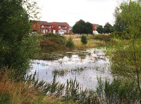 Houses beside the brook, Melksham