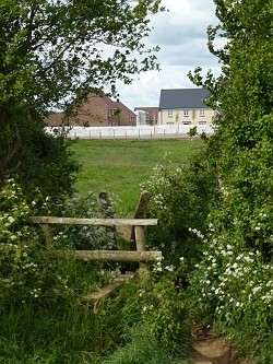 Field become housing estates