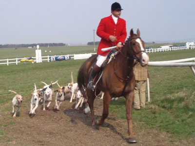 Avonvale hunt at Larkhill races