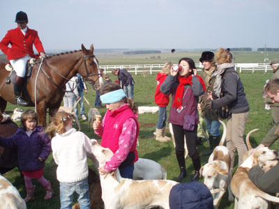 Avonvale Hunt, horse and hounds, Wiltshire