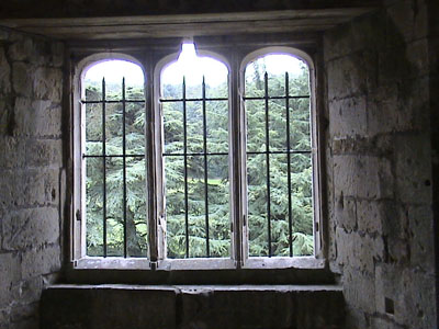 Old Wardour - view through a window