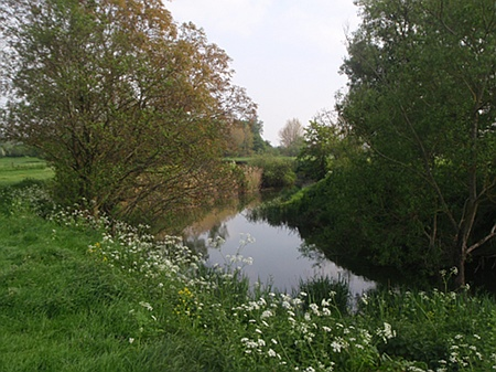 River Avon near Reybridge