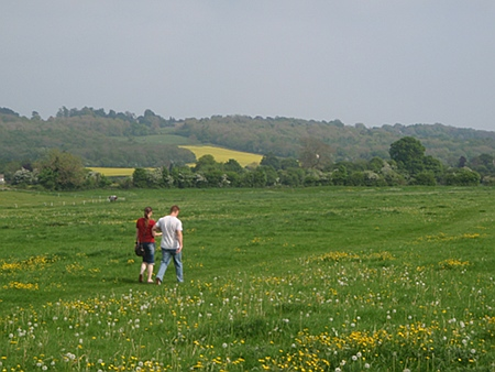 Walking the meadows in the Avon Valley