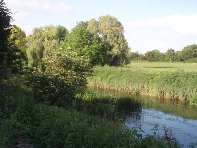 The river Avon at Reybridge