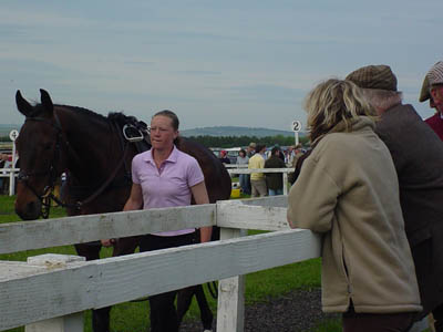 Larkhill - the parade ring at the races