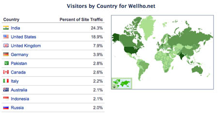 What countries to your web site visitors come from?