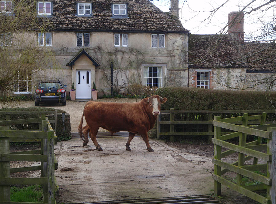Semington Farm
