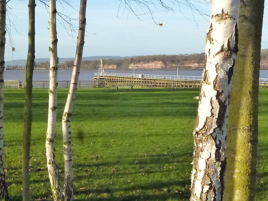 River severn between the birches