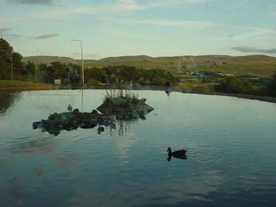 From the restaurant at Tebay services