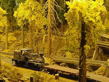 Logging Railroad